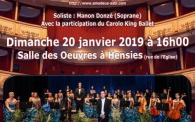 Amadeus orchestra – Envolée viennoise ce 20 janvier 2019 à 16h00